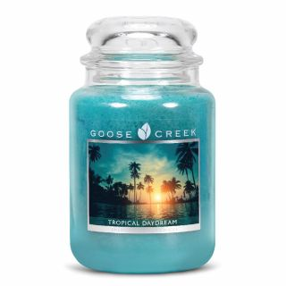 Goose Creek 24oz Large Scented 2 Wick Candle Jar Tropical Daydream