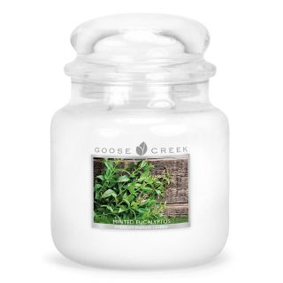 Goose Creek 16oz Scented American Medium Jar Candle with Double Wick Minted Eucalyptus