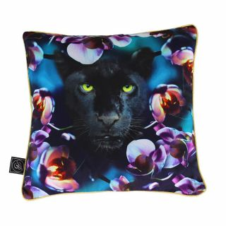 Ashleigh & Burwood Wild Things Luxury Duck Down Feather Cushion Born with Cattitude